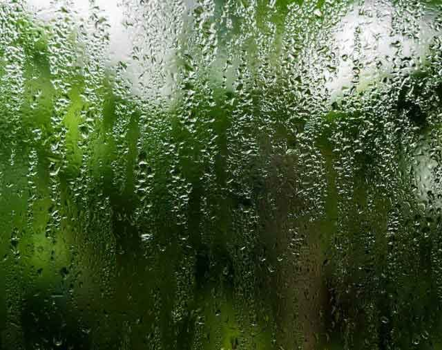 Window Condensation or Seal Failure?